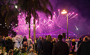 Mercedes-Benz customers celebrate the 2015 Brisbane Festival Riverfire finale.